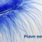 Plavo pero - pps priča za vjeronauk