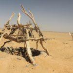 Zdenac u pustinji - priča za vjeronauk
